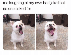Bad, Dank, and Memes: me laughing at my own bad joke that  no one asked for me_irl by Billaman MORE MEMES