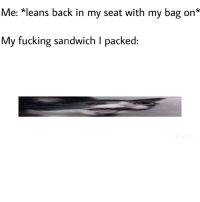 Fucking, Memes, and Retarded: Me: *leans back in my seat with my bag on*  My fucking sandwich I packed Am I just retarded via /r/memes http://bit.ly/2TTEQo2
