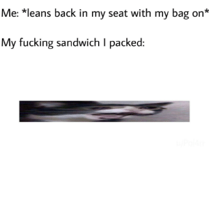 Dank, Fucking, and Memes: Me: *leans back in my seat with my bag on*  My fucking sandwich I packed Am I just retarded by Pol4rr MORE MEMES