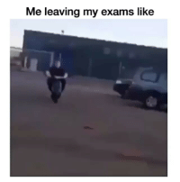Comment your worst semester grade ⬇ Follow me @wackalicous for more @wackalicous @wackalicous funny exams semester school lol lmao funny funnyvideo comedy like4like follow4follow likeforlike comedic sports basketball football l4l fail epicfail funnyfail ecipfails: Me leaving my exams like Comment your worst semester grade ⬇ Follow me @wackalicous for more @wackalicous @wackalicous funny exams semester school lol lmao funny funnyvideo comedy like4like follow4follow likeforlike comedic sports basketball football l4l fail epicfail funnyfail ecipfails