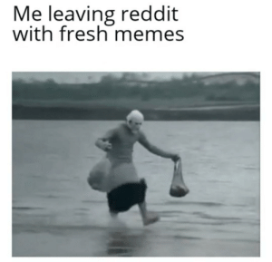 memes for days: Me leaving reddit  with fresh memes memes for days