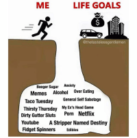 Being an Adult, Destiny, and Ex's: ME  LIFE GOALS  @thetastelessgentlemen  Booger Sugar Anxiety  Memes Alcohol Over Eating  Taco Tuesday General Self Sabotage  Thirsty Thursday My Ex's Head Game  Dirty Gutter Sluts Porn Netflix  YoutubeA Stripper Named Destiny  Fidget SpinnersEdibles Being an adult is hard.