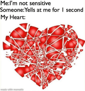 Meirl: Me:l'm not sensitive  Someone:Yells at me for I second  My Heart:  made with mematic Meirl