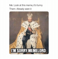 Funny, Meme, and Sorry: Me: Look at this meme, it's funny  Them: Already seen it  IM SORRY MEMELORD Sorry Memelord