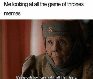 Queen of Thrones speaks: Me looking at all the game of thrones  memes  It's the only joy I can find in all this misery. Queen of Thrones speaks