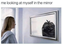 Mirror, Looking, and The Mirror: me looking at myself in the mirror