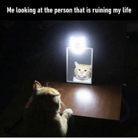 9gag, Life, and Memes: Me looking at the person that is ruining my life Me: *accepts it and not do anything about it* - whyamilikethis 9gag