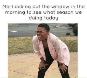 looking out: Me: Looking out the window in the  morning to see what season we  doing today