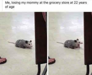 Meirl by Damnit_Dogz MORE MEMES: Me, losing my mommy at the grocery store at 22 years  of age Meirl by Damnit_Dogz MORE MEMES