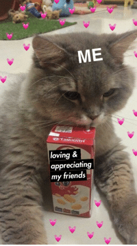 Friends, Tumblr, and Blog: ME  loving &  appreciating  my friends ilobcute:my fav drink