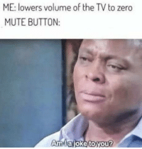 Zero, Mute, and You: ME: lowers volume of the TV to zero  MUTE BUTTON:  Amlajoke to you? Nothing to see here