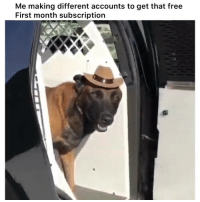 Facts, Funny, and Lmao: Me making different accounts to get that free  First month subscription Lmao facts 👉🏽(via: marquezzz202-twitter)
