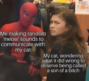 This most likely happens all the time: Me making random  'meow' sounds to  communicate with  my cat  My cat, wondering  what it did wrong to  deserve being called  a son of a bitch This most likely happens all the time