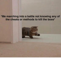Im a pro gamer for sure: Me marching into a battle not knowing any of  the cheats or methods to kill the boss Im a pro gamer for sure