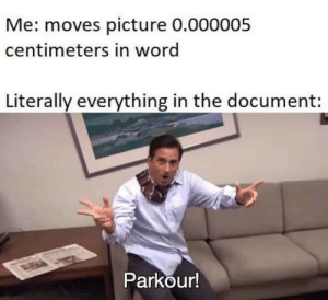 Document: Me: moves picture 0.000005  centimeters in word  Literally everything in the document:  Parkour!