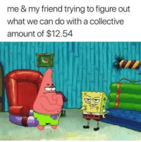 Memes, Collective, and 🤖: me & my friend trying to figure out  what we can do with a collective  amount of $12.54 $12.54 is a lot though 🤔