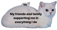 Me My Friends: Me  My friends and family  supporting me in  everything I do