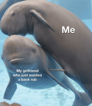 Accidentally on porpoise: Me  My girlfriend  who just wanted  a back rub Accidentally on porpoise