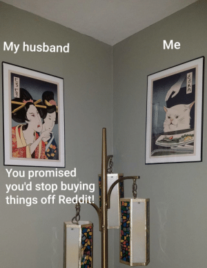 Sike you thought!: Me  My husband  You promised  you'd stop buying  things off Reddit! Sike you thought!