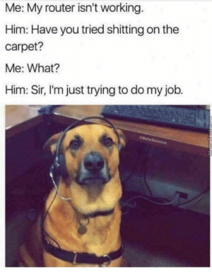 Do My Job: Me: My router isn't working.  Him: Have you tried shitting on the  carpet?  Me: What?  Him: Sir, l'm just trying to do my job.