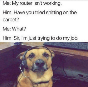 Router, Old, and Job: Me: My router isn't working.  Him: Have you tried shitting on the  carpet?  Me: What?  Him: Sir, I'm just trying to do my job.  BataSalm Old but still makes me laugh