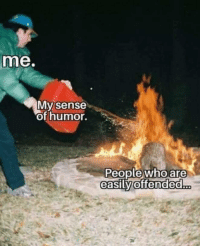 Who, Humor, and People: me.  My sense  of humor.  People who are  easilvV  offended...