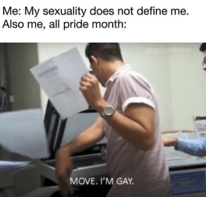 Me Also Me: Me: My sexuality does not define me  Also me, all pride month:  aybestfriend  MOVE. I'M GAY.