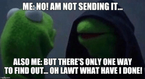 Image, Tagged, and Only One: ME NO! AM NOT SENDING IT..  ALSO ME: BUT THERE'S ONLY ONE WAY  TO FIND OUT...OH LAWT WHAT HAVE I DONE!  imgflip.com Image tagged in kermit hoodie - Imgflip
