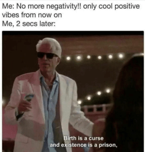 Dank, Memes, and Target: Me: No more negativity!! only cool positive  vibes from now on  Me, 2 secs later:  Birth is a curse  and existence is a prison, meirl by despisesunrise MORE MEMES