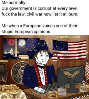 meirl: Me normally:  Our government is corrupt at every level,  fuck the law, civil war now, let it all burn.  Me when a European voices one of their  stupid European opinions  E pluribus unum  SEAL  O  HE GREAT  STATE  Her Majertys  Royal Tears  UNITED ST meirl