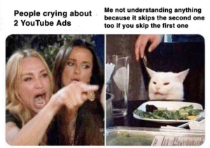 Who tf doesn't skip ads on YouTube: Me not understanding anything  because it skips the second one  too if you skip the first one  People crying about  2 YouTube Ads Who tf doesn't skip ads on YouTube
