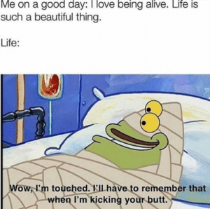 Alive, Beautiful, and Butt: Me on a good day: I love being alive. Life is  such a beautiful thing.  Life:  Wow, l'm touched. KIl have to remember that  when I'm kicking your butt. Being alive is the best.