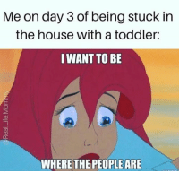 -Brandie: Me on day 3 of being stuck in  the house with a toddler:  I WANT TO BE  WHERE THE PEOPLE ARE -Brandie