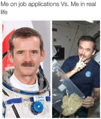 Life, Job, and Real: Me on job applications Vs. Me in real  life  HADFIELD
