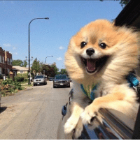 me on my way to make bad decisions: me on my way to make bad decisions