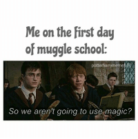 Gryffindor, Harry Potter, and Memes: Me on the first day  of muggle school.  potte  C  So we aren't going to use magic? Lmao, yasssss! 😂😂😂 harrypotter thechosenone theboywholived ronweasley gryffindor bestfriends lmao harrypottermeme harrypottermemes • Qotd: What are your favourite Harry Potter spells? Aotd: Wingardium leviosa, stupefy and accio! ❤ • Potterheads⚡count: 15,344