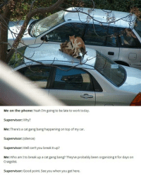 And I can't even get a text back... | follow @fuckersbelike for more: Me on the phone  Yeah I'm going to be late to work today.  Supervisor: Why?  Me: There's a cat gang bang happening on top of my car.  Supervisor: (silence)  Supervisor:  Well can't you break it up?  Me  Who am I to break up a cat gang bang? Theyve probably been organizing it for days on  Craigslist.  Supervisor: Good point. See you when you get here. And I can't even get a text back... | follow @fuckersbelike for more