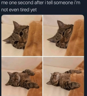 Dank, Memes, and Target: me one second after i tell someone i'm  not even tired yet Meirl by Available_Subject MORE MEMES