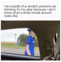 🤷🏼♂️🤷🏼♂️🤷🏼♂️ (twitter | cumrascal): me outside of a random persons car  thinking it's my uber because i don't  know what a white honda accord  looks likee 🤷🏼♂️🤷🏼♂️🤷🏼♂️ (twitter | cumrascal)