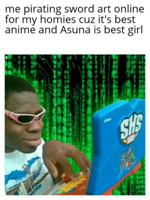 Anime, Meme, and Squad: me pirating sword art online  for my homies cuz it's best  animé and Asuna is best girl  30 for the squad ( this is just a meme please dont hate me )