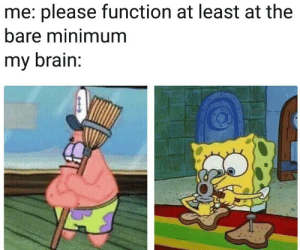 Brain, Function, and Please: me: please function at least at the  bare minimum  my brain