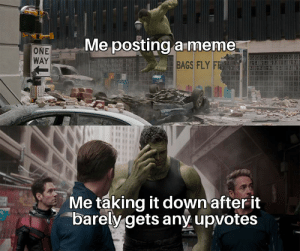 Meme, Reddit, and One: Me posting a meme  ONE  WAY  BAGS FLY FR  Me taking it down after it  barely gets any upvotes Regretful me