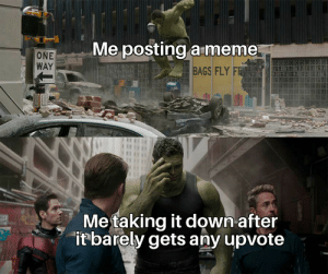 Meme, Reddit, and One: Me posting a meme  ONE  WAY  BAGS FLY FR  Metaking it down after  itbarely gets any upvote And that's a fact