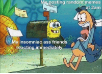 Ass, Memes, and Random: Me posting random memes  at 2am  My insomniac ass friendsC  reacting immediately