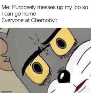 Memes, Home, and Job: Me: Purposely messes up my job so  I can go home  Everyone at Chernobyl:  u/NotNordyy Tom memes are not dead yet (Creater at bottom left)