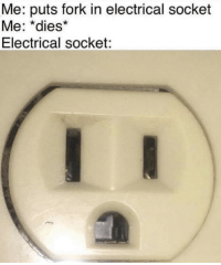 Socket, Electrical, and Fork: Me: puts fork in electrical socket  Me: *dies*  Electrical socket: o