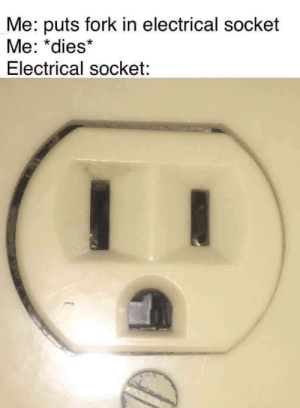 Dank, Meme, and Memes: Me: puts fork in electrical socket  Me: *dies*  Electrical socket: A Diverse meme by znelenz MORE MEMES