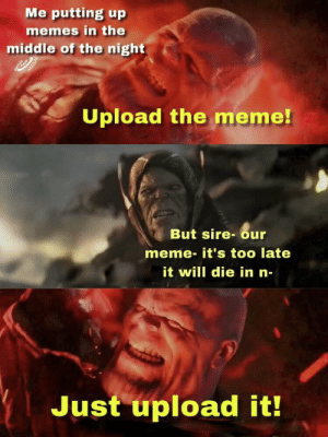 Meme, Memes, and The Middle: Me putting up  memes in the  middle of the night  Upload the meme!  But sire-our  meme- it's too late  it will die in n-  Just upload it! The hardest sacrifices require the strongest wills