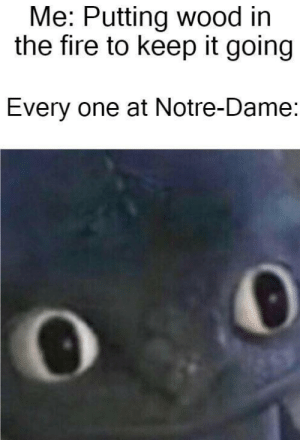 Fire, Notre Dame, and One: Me: Putting wood irn  the fire to keep it going  Every one at Notre-Dame Zis iz not a focking camp fire!