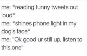 "Dank, Dogs, and Funny: me: *reading funny tweets out  loud*  me: *shines phone light in my  dog's face*  me: ""Ok good ur still up, listen to  this one"" Meirl by DisDudeForReal FOLLOW HERE 4 MORE MEMES."